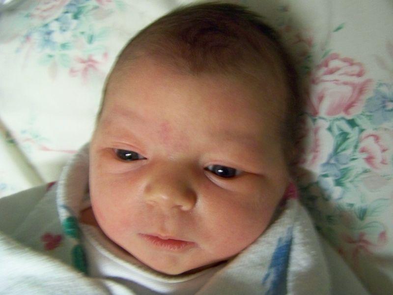Darcy Cheyenne's First Photos 026