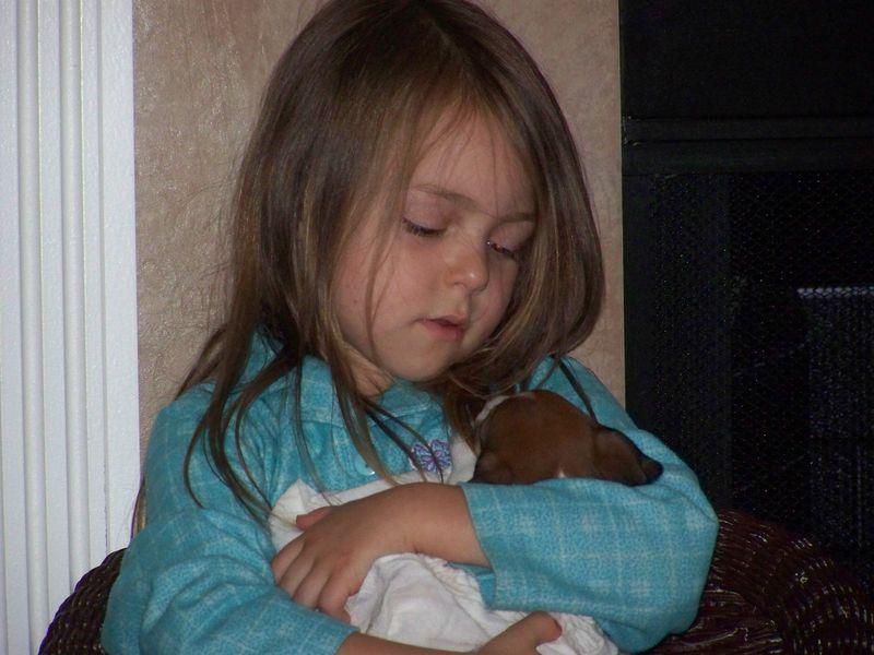 Sadie's Puppies, born May 16 026